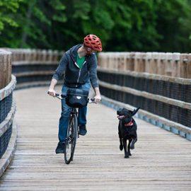 Bike and rider