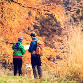 Couple hiking in autumn forest vintage